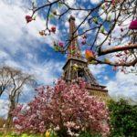 Спецпредложение- Франция Классика — 360 евро !!!